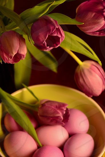 Tulips and Easter Eggs photo