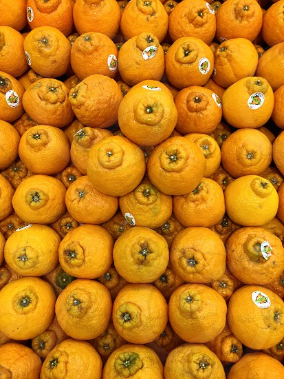 Sumo Oranges photo