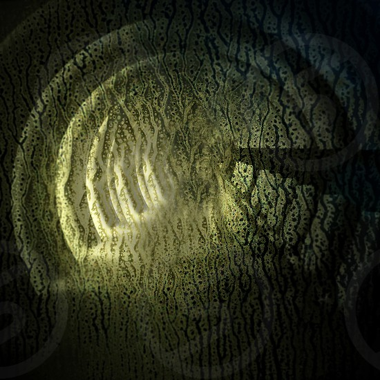 green and black spiral wallpaper photo