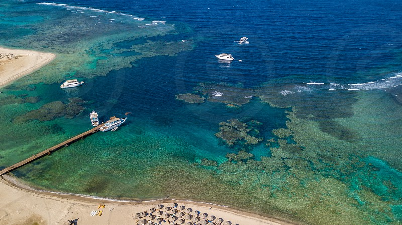 Coral Reef Over Marsa Alam Egypt photo