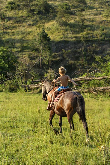 kid riding a horse in the forest photo