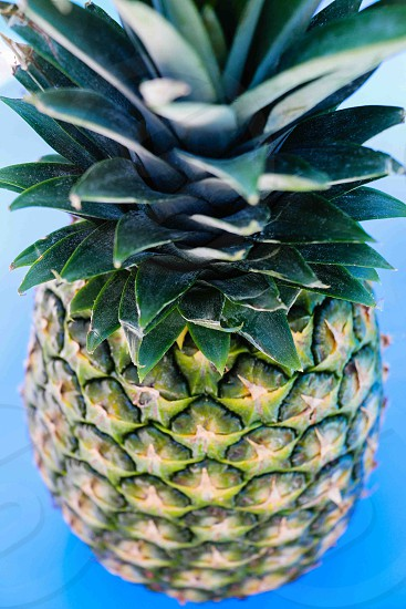 close up photo of pineapple photo