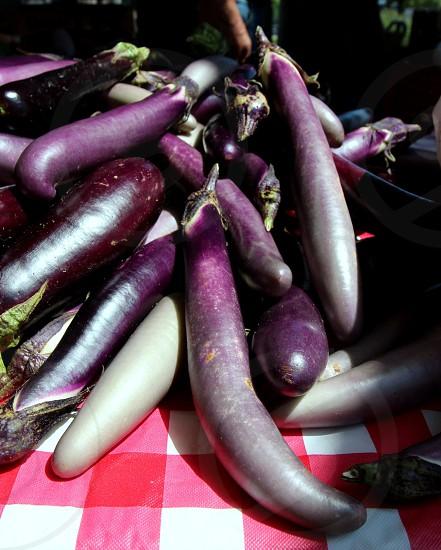 Silver purple long eggplant at a farmers market photo