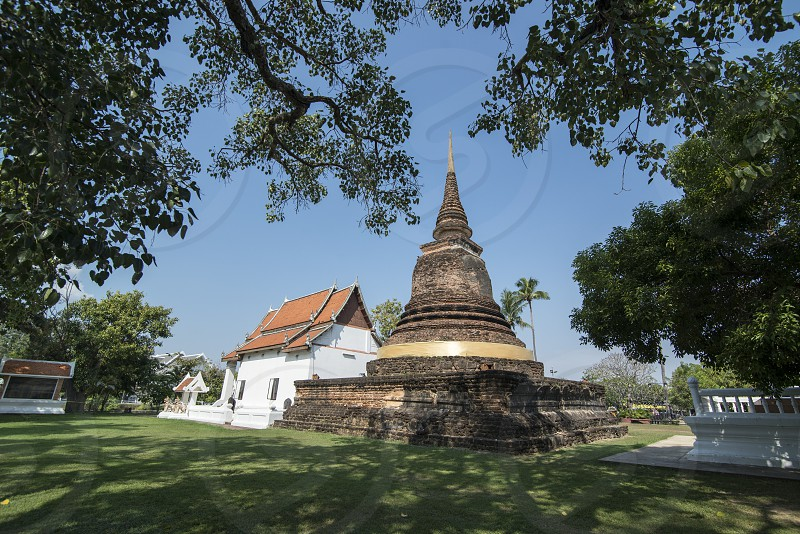 the Wat Tra Phang Thong Temple in the Historical Park in Sukhothai in the Provinz Sukhothai in Thailand.   Thailand Sukhothai November 2018 photo