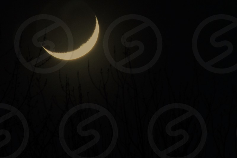 crescent moon and silhouette of grass field during nighttime photo