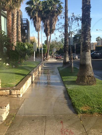 Walk of west Hollywood fame photo