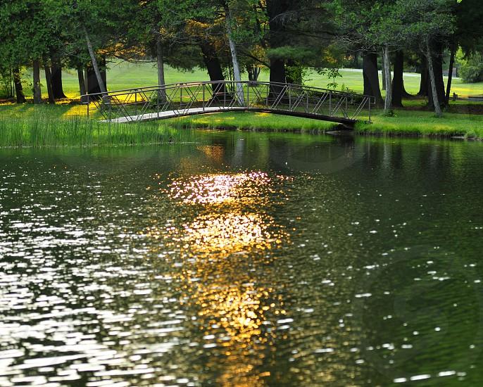 Light on the pond photo