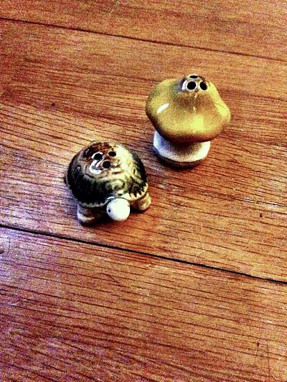 Ceramic turtle and mushroom salt and pepper shaker set photo