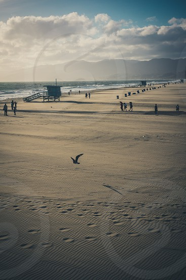 Santa monica beach at sunset.  photo