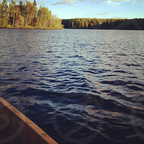 All is Silent. Nancy Lake Alaska photo