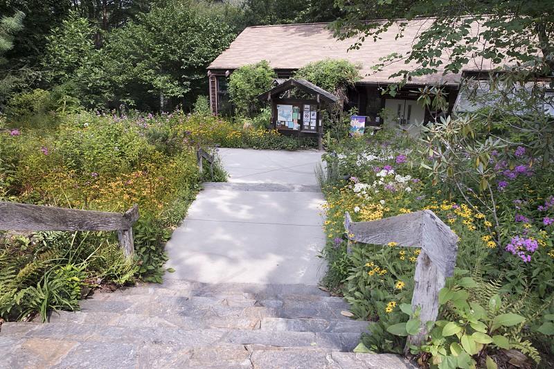 Botanical Gardens; Asheville; North Carolina; nature; flowers; plants photo