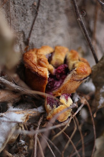 Mini-pie berries sweets holidays cinnamon cream cheese  photo