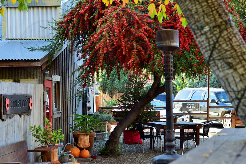 Lovely places in Los Olivos  photo