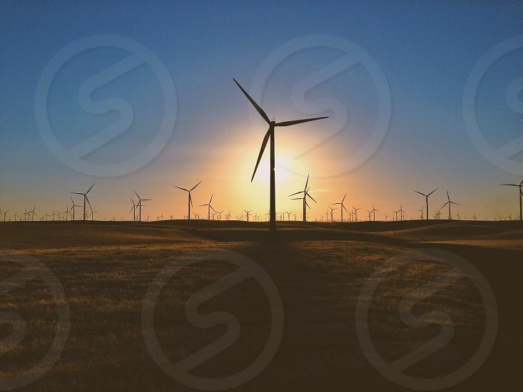 yellow sun over windmills photo