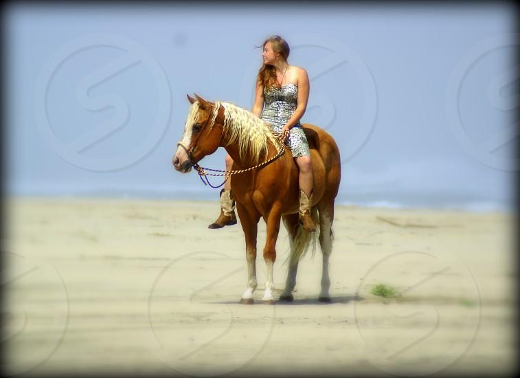 Palomino beach ocean beautiful girl cowgirl photo