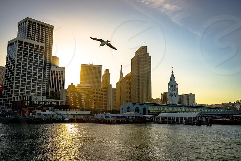 San Francisco California USA photo