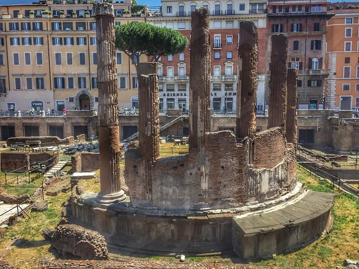 Largo di Torre Argentina Rome photo
