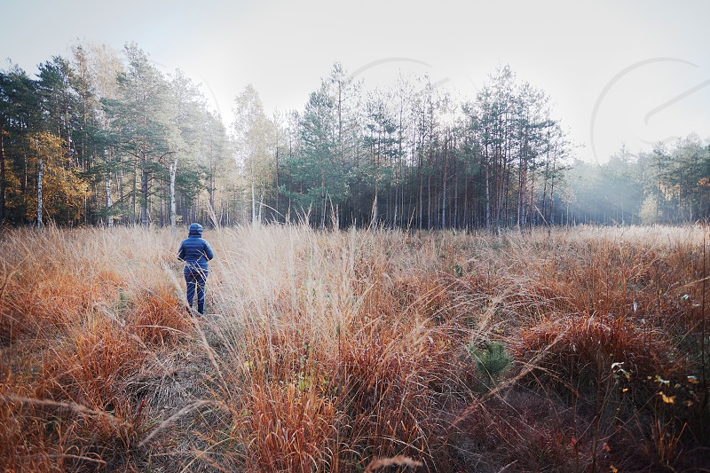 Woman walking through a meadow toward a forest. Forest in autumn season. Colorful foliage on trees lit by morning sunlight. Natural nature forest landscape in autumn warm sunlight day. Real people authentic situations photo