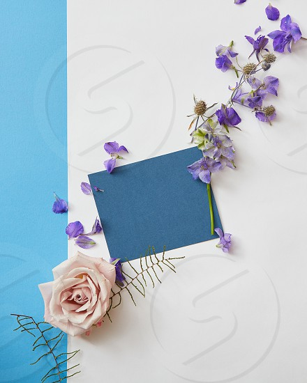 greeting card of purple flowers and blue paper on a white background flat lay photo