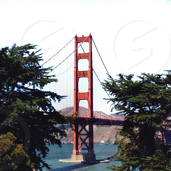 golden gate bridge photo