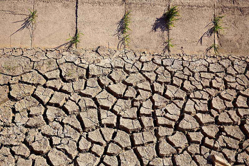 Dried irrigation ditch clay soil in Albufera rice fields of Valencia photo