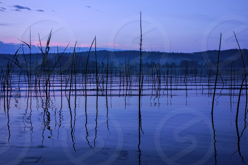 Serene and misty summer lake in Nokia Finland after heavy rain storm in late evening during a blue hour. photo