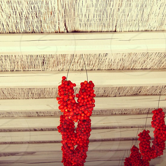 red cherries hanging on ceiling photo