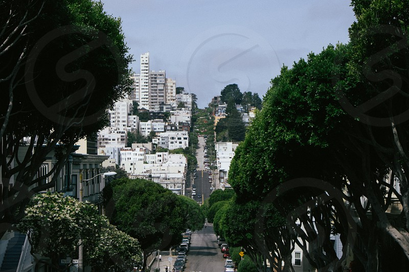 Very crooked Lombard Street in San Francisco. Green trees blue sky buildings and cars. photo
