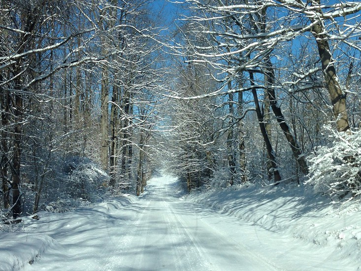 Wintery covered road photo