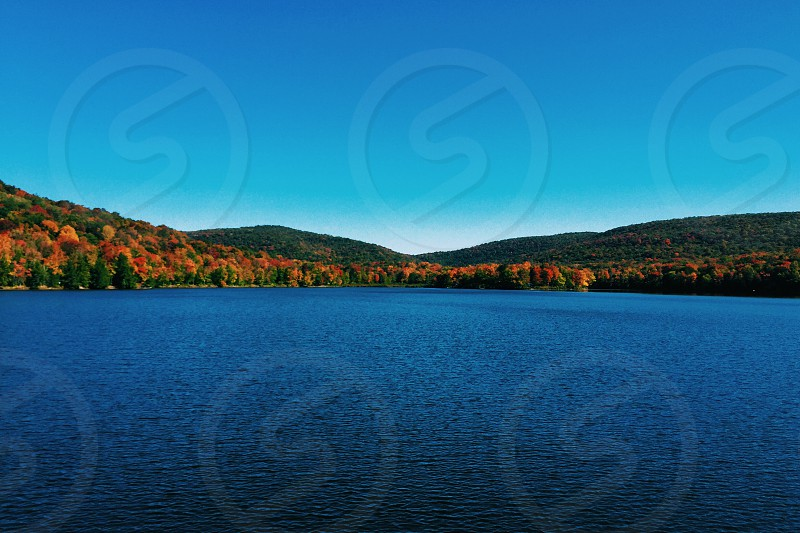 Fall colors on the pond in upstate New York. photo