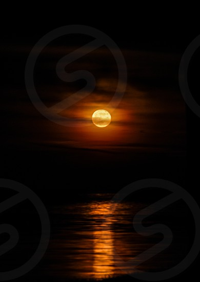 Moonrise over the ocean photo