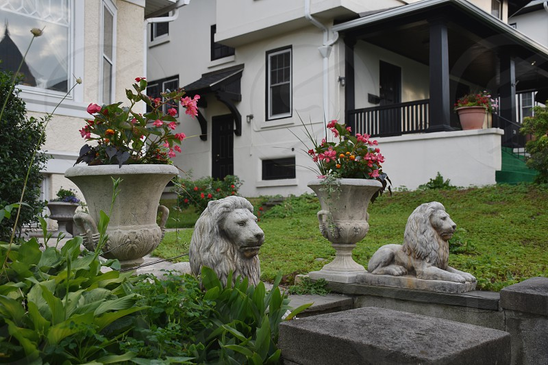 Flower pots and lions in front yard photo