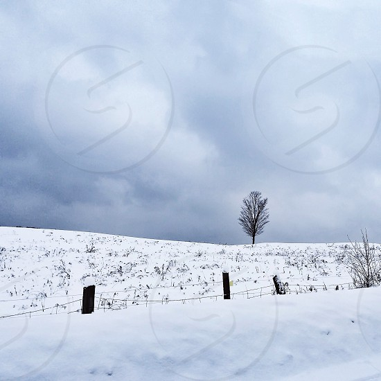 snow covered hill photo