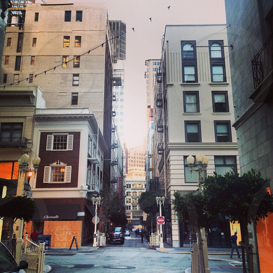 street city view  photo