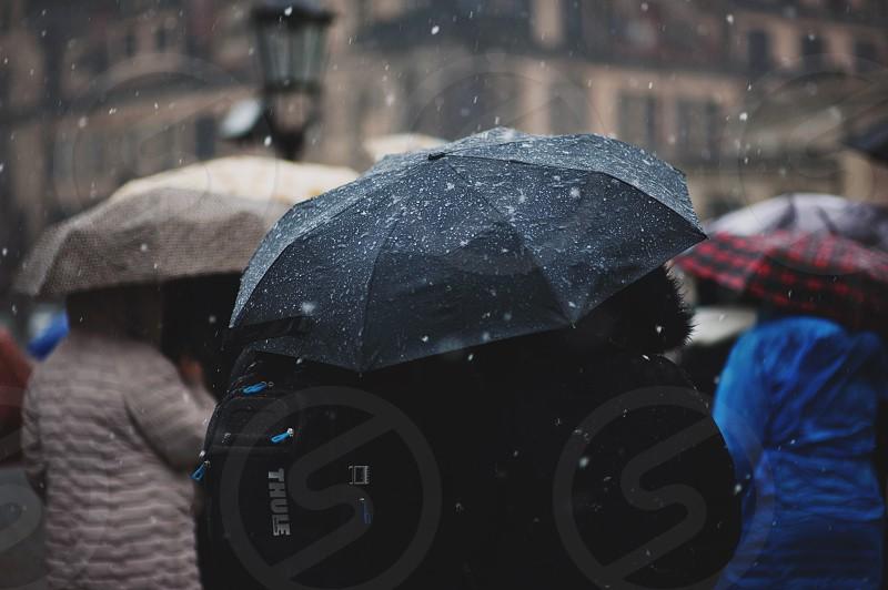 rain drops water rainy wet rainy day autumn spring cold humidity freshness photo