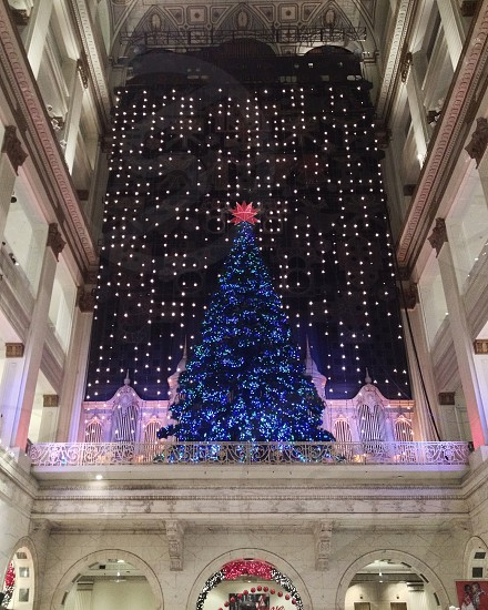 The Christmas tree at Macy's Center City (originally Wanamaker's). The Christmas Light Show accompanied by the Wanamaker Organ is an extremely popular holiday attraction. photo