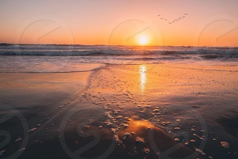 Ocean Beach San Francisco Ca photo