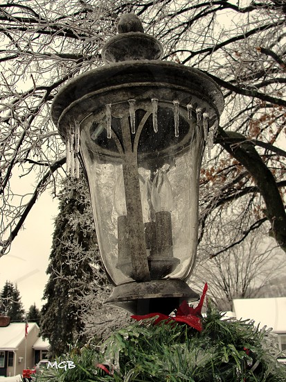 Lamppost in Winter. photo