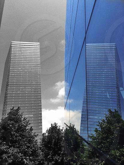 glass skyscraper photo
