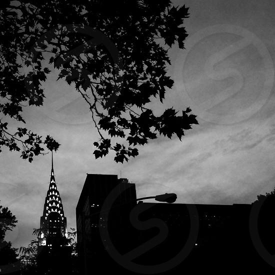 Chrysler Building at dusk photo