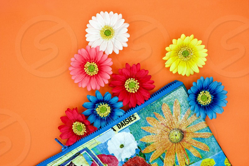 Flat lay of Gerbera daisies and a colorful floral-print zipper bag with blue trim on a bright orange background photo