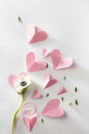White flower and pink paper hearts on a white background photo
