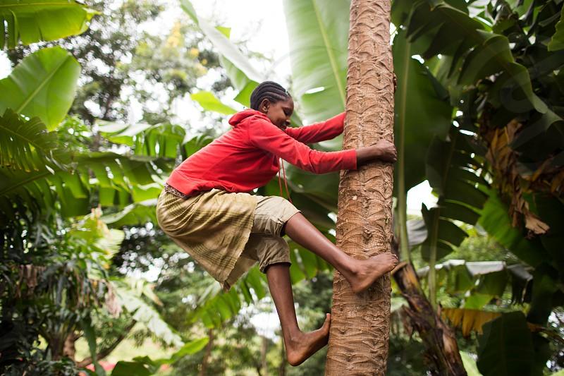 boy wearing red jacket climbing a tree near the banana tree during daytime photo