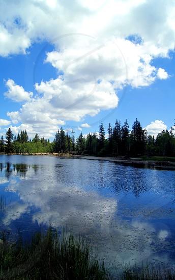 Lakeside views  photo