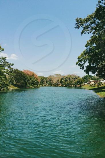 river next to trees photo