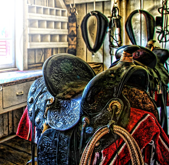 Western saddle and harness in tack room photo