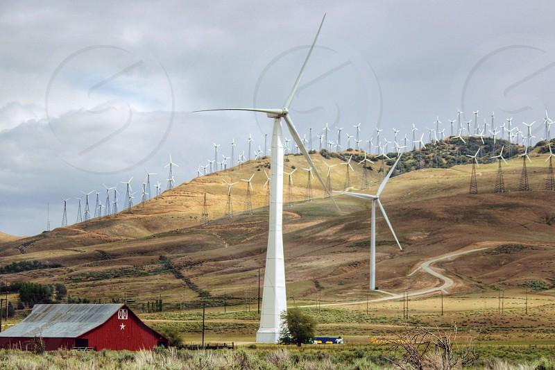field full of wind turbines photo