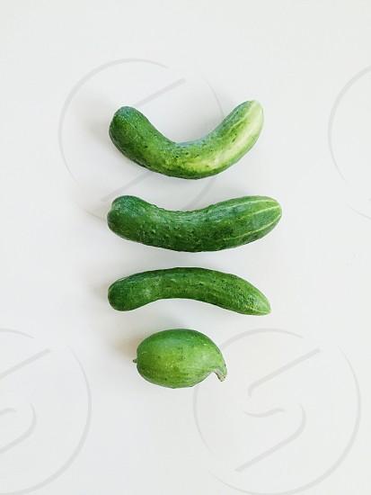 Cucumbers healthy vegetables garden photo