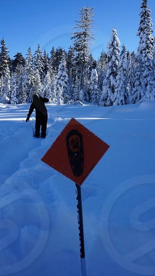 snowshoeing fun at White Pass Ski Area photo