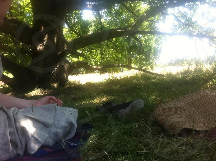 Summer Picnic on Hampstead Heath London  photo